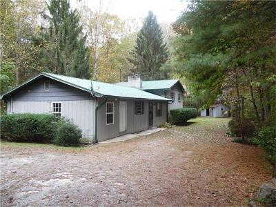 Transylvania County Single Family Home For Sale: 246 Little Egypt Road