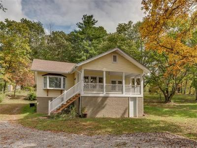 Asheville Single Family Home For Sale: 165 Lower Grassy Branch Road