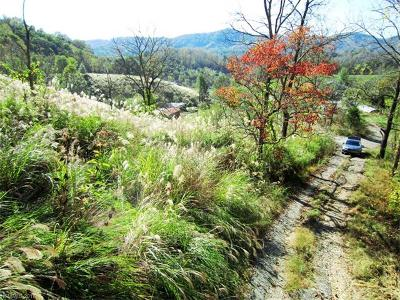 Marshall NC Residential Lots & Land For Sale: $40,000