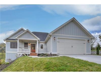 Asheville Single Family Home For Sale: 5 Magnolia Farms Drive