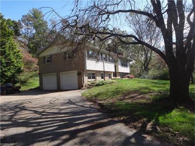 Hendersonville Single Family Home For Sale: 3743 Brevard Road