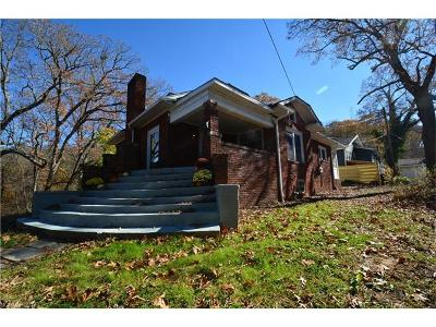 Asheville Single Family Home For Sale: 111 White Fawn Drive