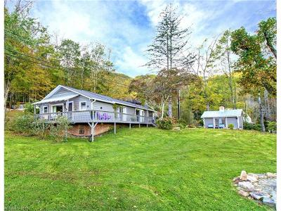 Waynesville Single Family Home Under Contract-Show: 315 Biodome Drive