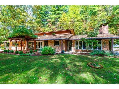 Transylvania County Single Family Home For Sale: 425 Robin Hood Road