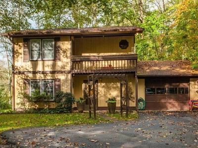 Hendersonville Single Family Home For Sale: 3 Thornwood Lane