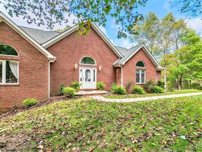 Asheville Single Family Home For Sale: 137 Stonecrest Drive #37