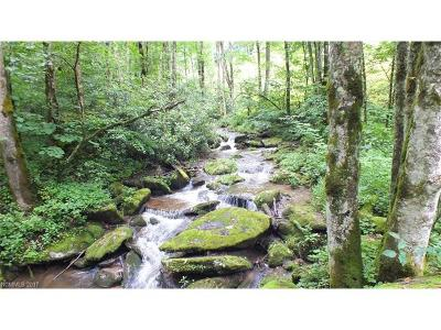 Hot Springs NC Residential Lots & Land For Sale: $40,000