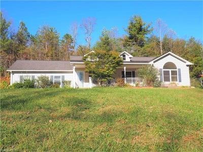 Weaverville Single Family Home For Sale: 255 McLean Road #30