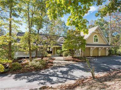 Hendersonville Single Family Home For Sale: 28 Falls Lane