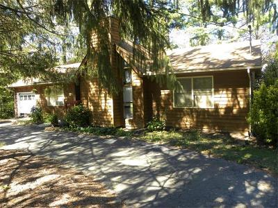 Black Mountain Single Family Home For Sale: 116 Taylor Street