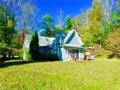 Hendersonville Single Family Home For Sale: 1333 Howard Gap Road