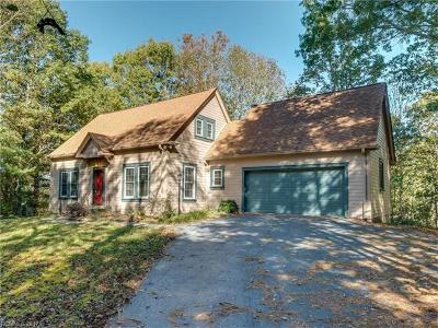 Hendersonville Single Family Home For Sale: 225 Trappers Trail