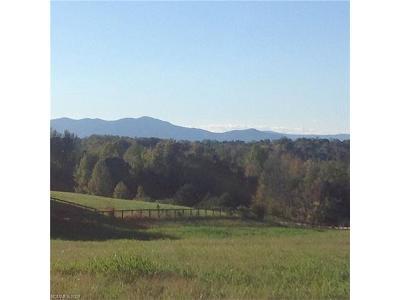 Residential Lots & Land For Sale: 17.71 Ac Radar Road