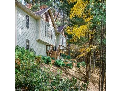 Asheville Single Family Home For Sale: 185 Patriots Drive