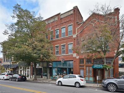 Asheville Condo/Townhouse For Sale: 32 Broadway Street #320