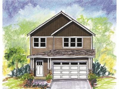 Asheville Single Family Home For Sale: Lot 20 Woodbridge Park Drive