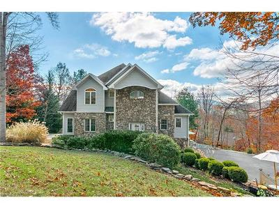 Asheville Single Family Home For Sale: 115 Buffalo Trail #99