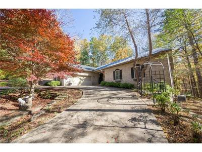 Transylvania County Single Family Home For Sale: 413 Tlvdatsi Drive #23A/11