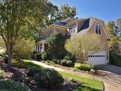 Asheville Single Family Home For Sale: 58 White Ash Drive
