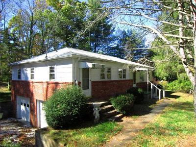Asheville Single Family Home For Sale: 49 Forest Ridge Drive