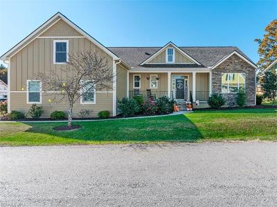 Hendersonville Single Family Home For Sale: 10 Shoeing Box Way
