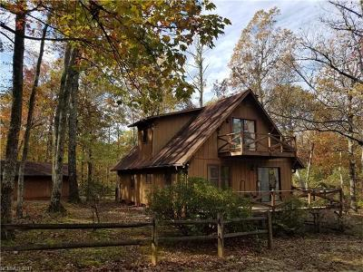 Saluda Single Family Home For Sale: 311 Tanglewood Lane