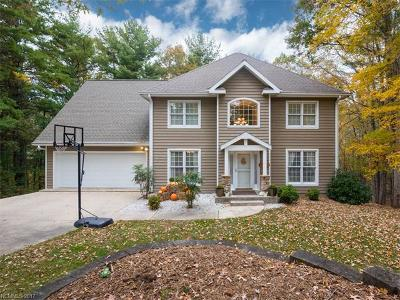 Asheville Single Family Home Under Contract-Show: 141 Skyview Circle