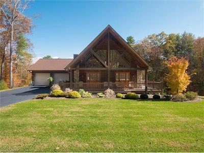 Weaverville Single Family Home For Sale: 185 Clarks Chapel Road