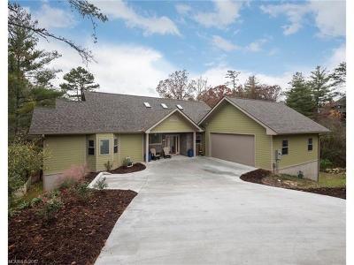 Asheville Single Family Home For Sale: 49 Hillcreek Drive