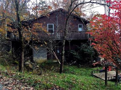 Hot Springs Single Family Home For Sale: 810 Fox Town Road