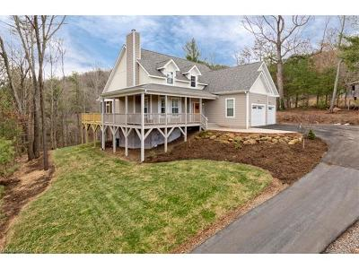 Asheville Single Family Home For Sale: 11 Turtledove Trail
