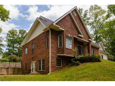 Candler Single Family Home For Sale: 15 Dynasty Lane