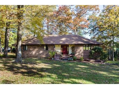 Mills River Single Family Home For Sale: 168 S Country Lane