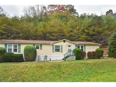 Asheville Manufactured Home For Sale: 214 Magnolia Way