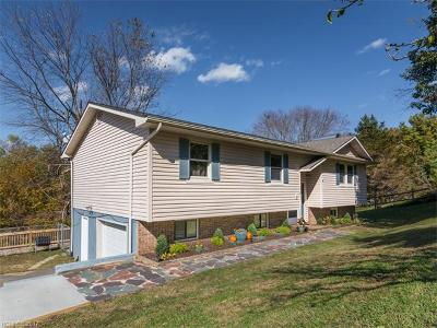 Weaverville Single Family Home For Sale: 17 Lakeview Lane