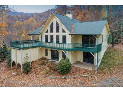 Waynesville Single Family Home For Sale: 186 Fallen Timber Drive