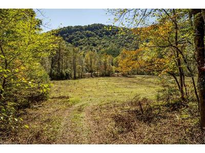 Lake Lure Residential Lots & Land For Sale: 1312 Conner Road
