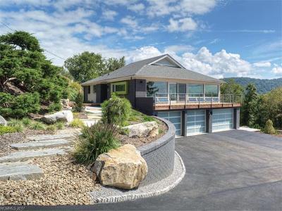Asheville Single Family Home For Sale: 103 Horizon Hill Road