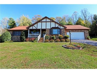 Hendersonville Single Family Home For Sale: 121 Mountain Valley Drive