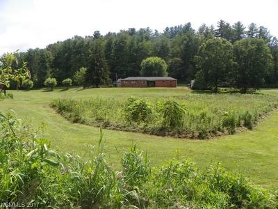 Weaverville Single Family Home For Sale: 30 Old Mars Hill Highway