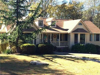 Lake Lure Single Family Home For Sale: 732 Whitney Boulevard