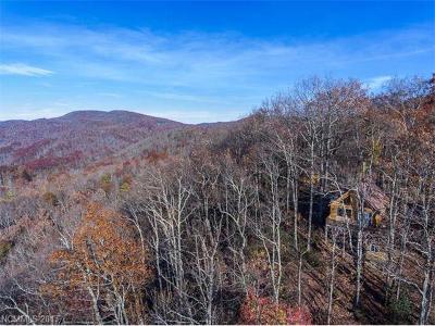 Black Mountain Single Family Home For Sale: 19 Kate Mountain Road