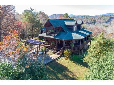 Rutherfordton Single Family Home For Sale: 976 Freemantown Road