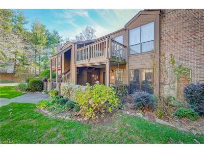 Asheville Condo/Townhouse Under Contract-Show: 43 Ravencroft Lane
