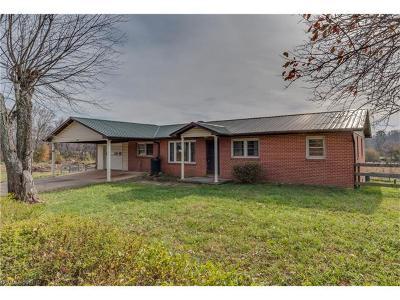 Hendersonville Single Family Home For Sale: 2030 S Mills Gap Road