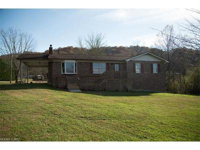 Hendersonville Single Family Home For Sale: 54 Openview Road