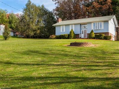Weaverville Single Family Home For Sale: 19 Westview Lane
