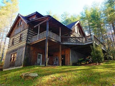 Pisgah Forest Single Family Home For Sale: 152 Spring Meadow Drive