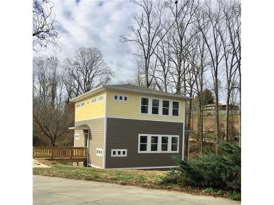 Asheville Single Family Home For Sale: 12 Riverlink Lane