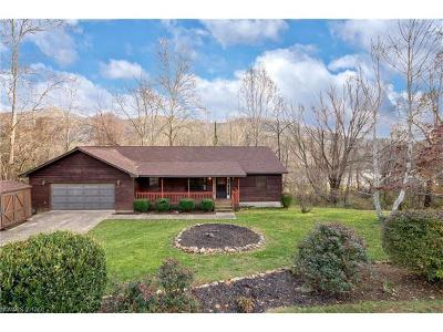 Weaverville Single Family Home For Sale: 16 Camelfield Road